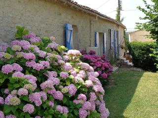 Chambres d'hôtes between Bordeaux and Bergerac - Malbec room - Massugas vacation rentals