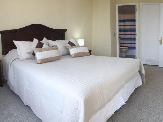 Flat near Plaza Armas - La Moneda - Santiago vacation rentals
