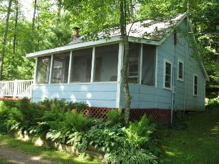 Lakeside Blue cabin - Hayward vacation rentals
