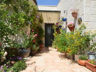 29 min from Jerusalem, 30 minutes from Tel Aviv - Shoresh vacation rentals
