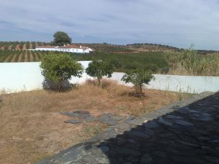 Falcon's Nest - Alentejo vacation rentals