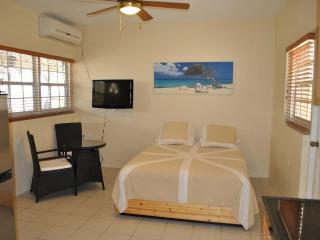 Studio apartment Stone Throw form everything Aruba - Oranjestad vacation rentals