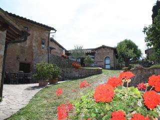 Contryhouse near siena: Apartment 3 Person - Sinalunga vacation rentals