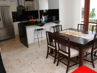 Splendid 1 Bedroom Apartment in Old Town - Cartagena vacation rentals