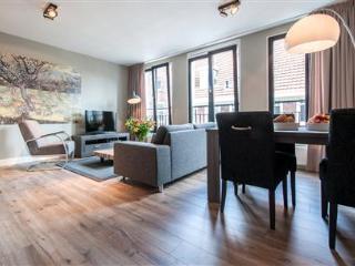 Van Gogh Leidseplein F - Amsterdam vacation rentals