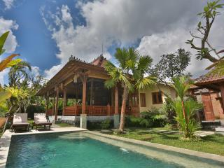 BALI UBUD VILLA is a privately owned villa in Ubud - Ubud vacation rentals