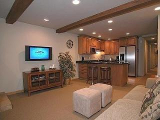 Beautiful  2 bedroom, 2 bath Condo in the heart of Aspen - Aspen vacation rentals