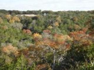 A Lazy S Place TX Hill Country Dog Friendly House - Center Point vacation rentals
