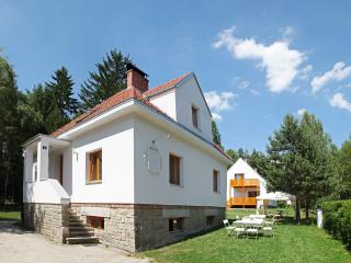 2 Cosy villas by lake and forest, 1 km to golf - Nova Bystrice vacation rentals