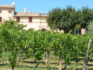 Farm holidays Alla Vecchia Cascina - Corinaldo vacation rentals