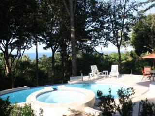 Villa Pochote - A Private Ocean View Beach Villa - Santa Teresa vacation rentals
