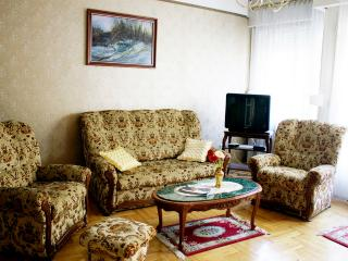 Perfect Condo with Internet Access and A/C - Budapest vacation rentals