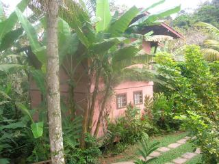 Chalets in the Atlantic Forest, 100m from the Sea - State of Sao Paulo vacation rentals