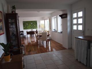 Isolated stone house/vacation house island korcula - Vela Luka vacation rentals
