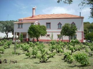 Country House B&B/Self-Catering Apartment, Serra Sao Mamede:Quinta da Vila Maria - Portalegre vacation rentals