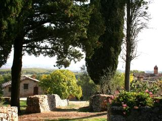 Farm apartment Il Granaio in Siena countryside - Siena vacation rentals