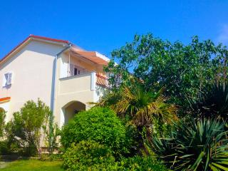 happy sunny holidays at Island Rab / Apartment 1 - Rab vacation rentals