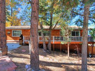 Mishka Cabin - Walk to Bear Mtn, Zoo, & Golf! Spa! - Big Bear Lake vacation rentals