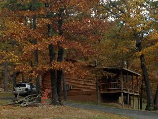 Wild Plum ~ Small Log Cabin #2 - Arkansas vacation rentals