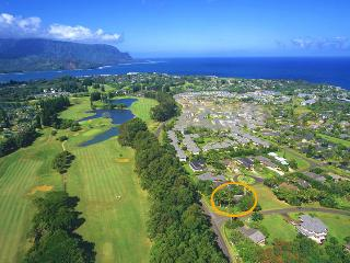 Secluded Family Friendly Home (Newly Listed) - Princeville vacation rentals