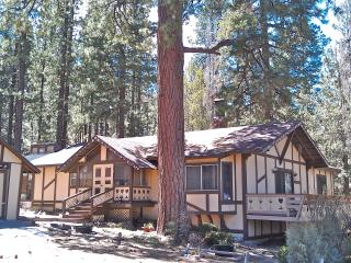 Tall Pines Chalet--Seclusion, Nature & Hot Tub - Big Bear Lake vacation rentals