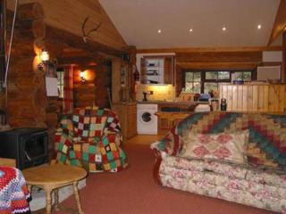 Luxurious log cabin on Blackdown Hills Somerset - Chard vacation rentals