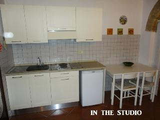 CASA ALADINA: STUDIO RIGHT IN THE CITY S.GIMIGNANO - San Gimignano vacation rentals