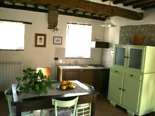 Farm apartment Gli Olivi, in Siena countryside - Siena vacation rentals