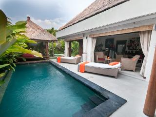 Nice Villa with Deck and Internet Access - Seminyak vacation rentals