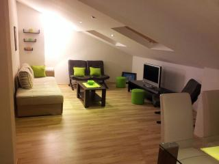 Lux 5' Walk from Old Town And Beaches - Budva vacation rentals