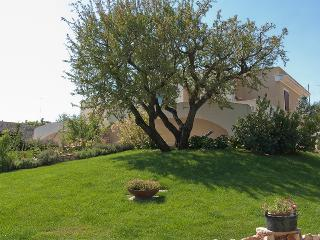 Nice House with Grill and Parking - Selva di Fasano vacation rentals