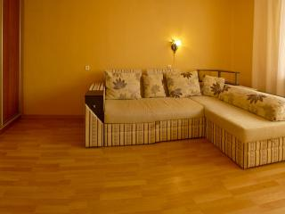 Modern 2-bedroom apartment in the center - Kharkiv vacation rentals