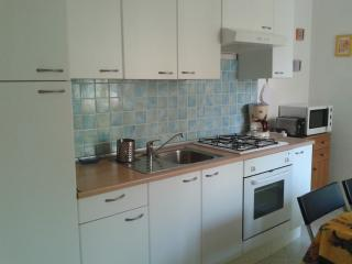 Large central apartment near St. Peter - Rome vacation rentals