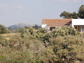 Casa Amor Perfeito Spa Quinta Serra de São Mamede - Castelo de Vide vacation rentals