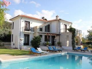 Villa For 8 Adults, Private Pool, Jacuzzi. Beach - Polis vacation rentals