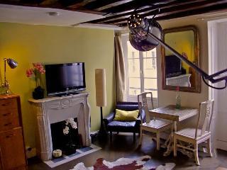 Charming studio 390 - Paris vacation rentals
