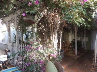 Tropical Ambiance/3 Min to convention cnt/dwn town - Pacific Beach vacation rentals