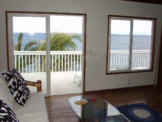 Oceanfront 1bd in tropical area, near beach - Pahoa vacation rentals