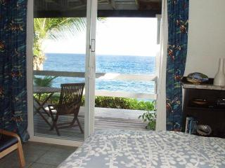 Oceanfront studio in tropical area, near beach - Pahoa vacation rentals