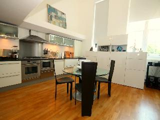 Superb 2 bedrooms flat in Battersea/Vauxhall - London vacation rentals