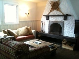 Pet friendly Tremblant lake access with fireplace - Mont Tremblant vacation rentals