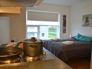 Hvolsvöllur - Well located apartment - Hvolsvollur vacation rentals