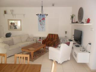 Be'er Sheva Luxurious 2 bd, 2 ba with lrg garden - Beersheba vacation rentals