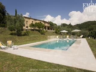 Lovely Villa with DVD Player and Microwave - Livorno vacation rentals