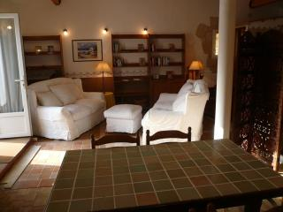Lovely Apartment, private terrace, swimming pool. - Roquefort les Pins vacation rentals