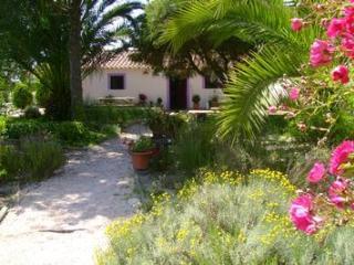 Casa da Palmeira Cottage near beach West Coast of Portugal, Zambujeira do Mar holiday cottage - Centro Region vacation rentals