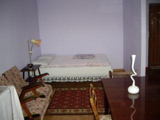 1-room apartment fo rent - Truskavets vacation rentals