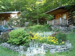 Cozy 1 bedroom Cabin in Willow - Willow vacation rentals