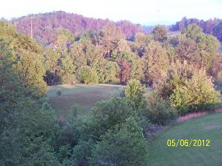 ~Brittany's Mountain Retreat~ near Asheville, NC - Leicester vacation rentals
