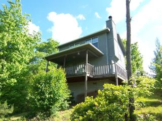 The Azalea Cabin 1 bdrm 2 bath on Laurel Mountain - Hiawassee vacation rentals